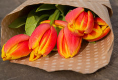Bouquet of tulips. In paper with polka dots on the wooden board Stock Image