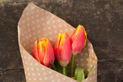 Bouquet of tulips. In paper with polka dots on the wooden board Royalty Free Stock Photography