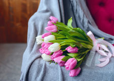 Bouquet of tulips with pink ribbon on gray blanket. Bouquet of pink and white tulips with pink ribbon on gray blanket at pink sofa royalty free stock photo