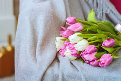 Bouquet of tulips with pink ribbon on gray blanket. Bouquet of pink and white tulips with pink ribbon on gray blanket at sofa stock images