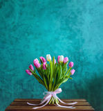 Bouquet of tulips with pink ribbon on the green painted wall bac. Bouquet of pink and white tulips with pink ribbon on the green painted wall background and royalty free stock photos