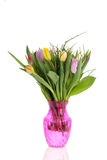 Bouquet tulips in pink vase Stock Images