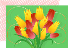 A bouquet of tulips, a postcard. A bouquet of red and yellow tulips, a bright postcard Stock Photo