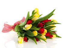 Bouquet tulips Royalty Free Stock Image