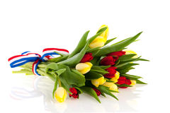 Bouquet tulips Royalty Free Stock Images