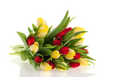 Bouquet tulips Stock Photography