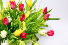Bouquet of tulips. Red,yellow and white tulips on a white background Royalty Free Stock Images