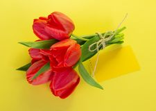 Bouquet of tulips with a rope and the empty card Royalty Free Stock Images