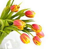 Bouquet of tulips, small DPOF. Beautiful bouquet of tulips in glass vase on white background Stock Photo