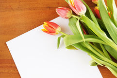 Bouquet of tulips on the table and paper sheet Stock Image