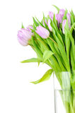 Bouquet of tulips in the vase Royalty Free Stock Images