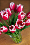 Bouquet of tulips in a vase Royalty Free Stock Image