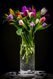 Bouquet of tulips in vase on dark stock photography