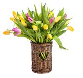 A bouquet of tulips in a vase of wicker. isolate on white background stock photo