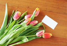 Bouquet of tulips and visiting card Stock Photography