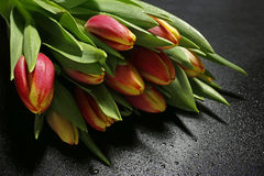 Bouquet of tulips with water drops on black background Stock Photography