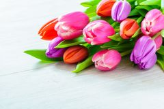 Bouquet of tulips for wedding - womens day - mothers day Stock Photos