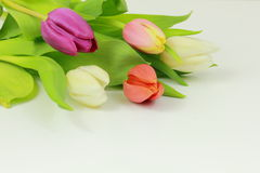 Bouquet of tulips. On white background Stock Photo