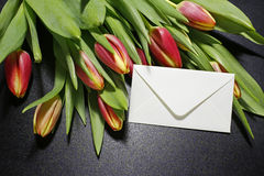 Bouquet of tulips and white envelope. On black background royalty free stock photography