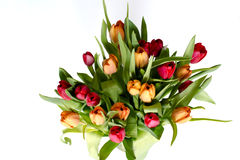 Bouquet of tulips on white - horizontal Royalty Free Stock Images