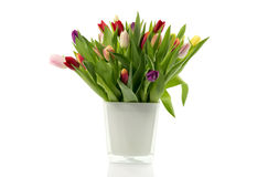 Bouquet of tulips in white vase Stock Photography