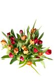 Bouquet of tulips on white - vertical Royalty Free Stock Photo