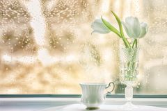 Bouquet of tulips on a windowsill. On a rainy day Royalty Free Stock Photography