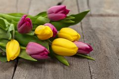 Bouquet of Tulips Royalty Free Stock Photo