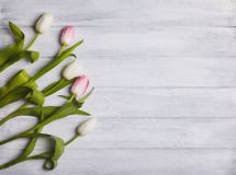 Bouquet of tulips on a wooden table stock photos