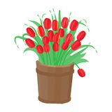 Bouquet of tulips in a wooden tub. Bouquet of red tulips in a wooden tub royalty free illustration