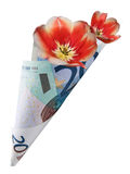 Bouquet in twenty euro Royalty Free Stock Photos