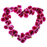 Bouquet of Valentines shaped heart design colorful Royal Pelargo Stock Image