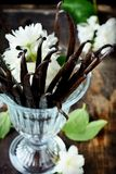 Bouquet of vanilla pods. And flowers in glass Stock Images
