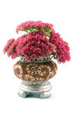 Bouquet in a vase Royalty Free Stock Photography