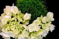 Bouquet vert Image libre de droits