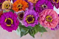 Bouquet vibrant des fleurs d'été de zinnia image stock