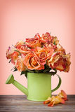 A bouquet of vintage roses in green watering can Royalty Free Stock Photos