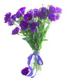 Bouquet  of  violet eustoma flowers Stock Photos