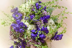 Bouquet of violet flowers close up. Blurred light background