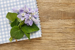 Bouquet of violet flowers (viola odorata) on checkered blue and Stock Image