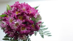 Bouquet with violet flowers stock video