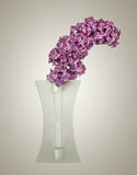 Bouquet of violet lilac in a vase Stock Images