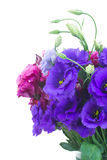 Bouquet  of  violet and mauve eustoma flowers Royalty Free Stock Image