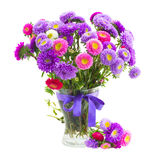 Bouquet of violet and pink  aster flowers Stock Photos