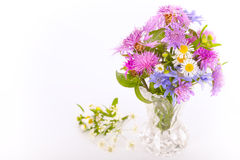 Bouquet of violet and purple meadow flowers Royalty Free Stock Photography