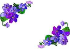 Bouquet of violets Stock Photo