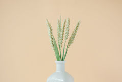 Bouquet of wheat spikelets in white vase. On a pale peach pastel background Stock Images