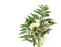 Bouquet of white Alstroemeria with fern isolated on white background Royalty Free Stock Photos