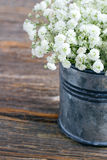 Bouquet of white baby's breath flowers Royalty Free Stock Images