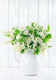 Bouquet of white bird cherry branches Royalty Free Stock Images